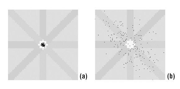 Figura 1. Plot di Lorenz degli intervalli δRR durante ritmo sinusale (a) e durante fibrillazione atriale (b) in un arco temporale di 2 minuti (14).